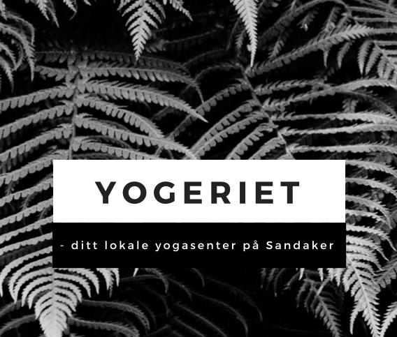 Yogeriet i Oslo